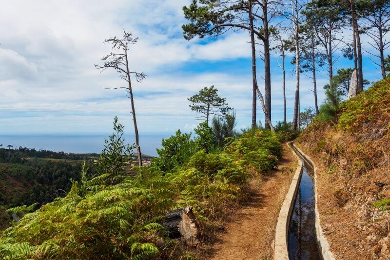 Levada Madeira Portugal