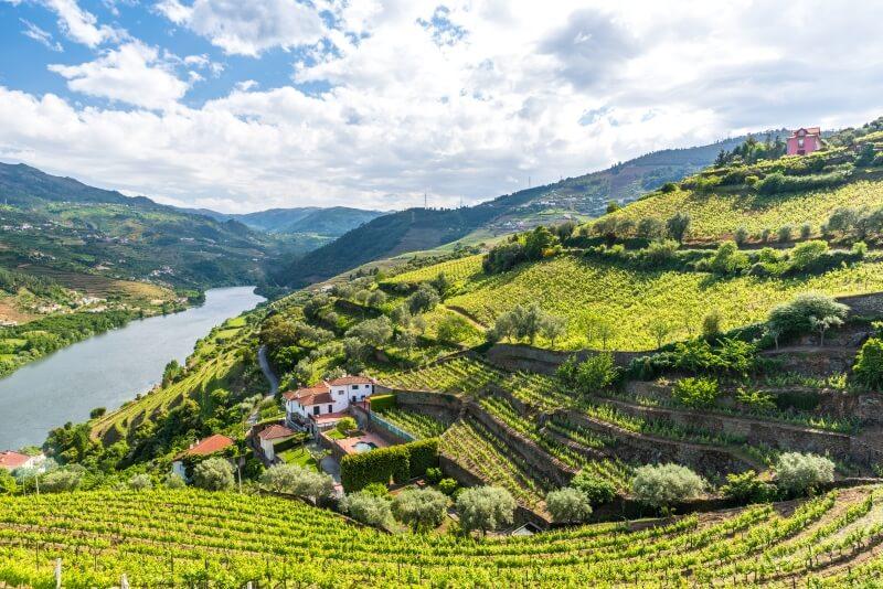 Autorondreis Portugal Douro wijngebied